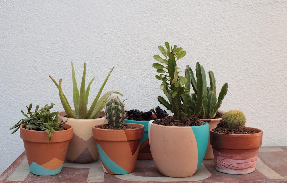 Put a Plant on It | DIY Painted Terra Cotta Pots