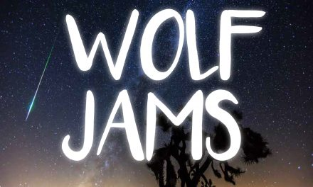 A Playlist for Perseid | Wolf Jams