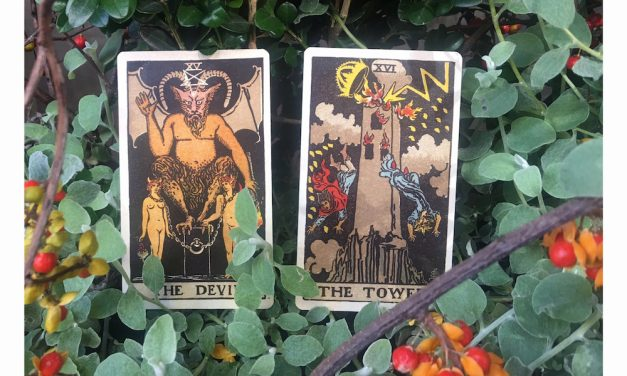 Monthly Medicine | November is Liberation through Sacred Death