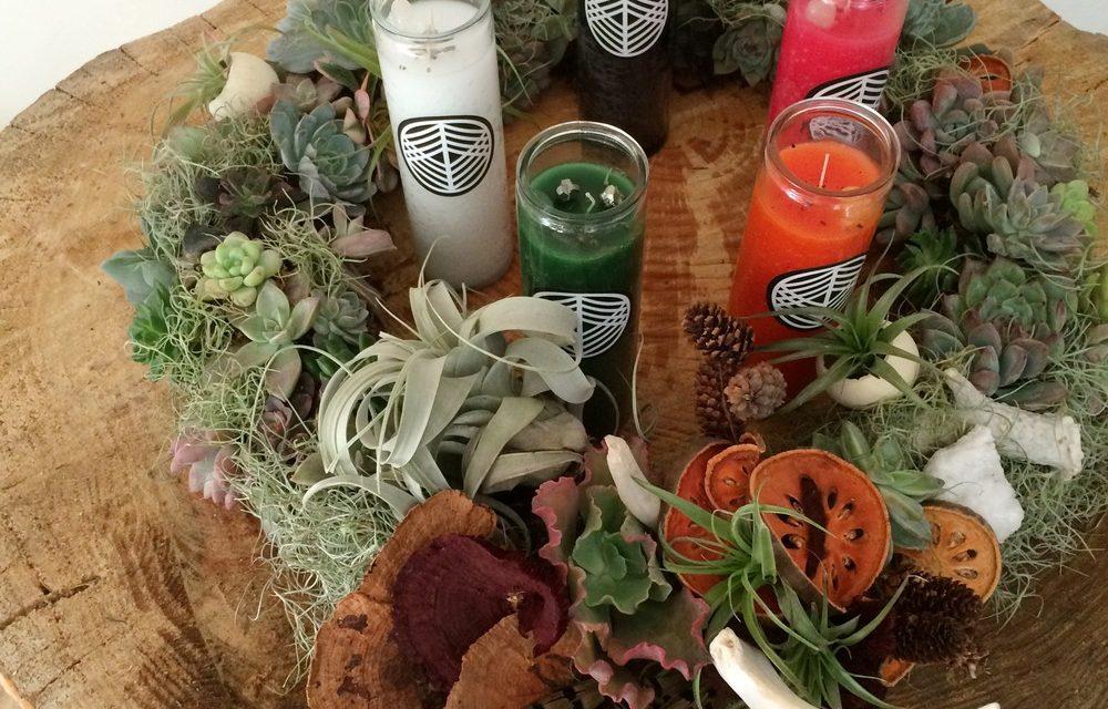 Howl-i-Day Rituals | Solstice Succulent Wreath