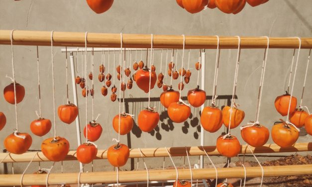 Hoshigaki | The Patient Art of Watching Persimmons Dry