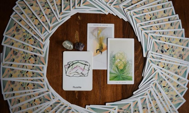 Monthly Medicine | January Wishes to Take You for a Ride