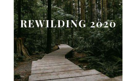 Announcing Rewilding 2020 & Open Registration: A weREWILD & Wolf Tribe Retreat