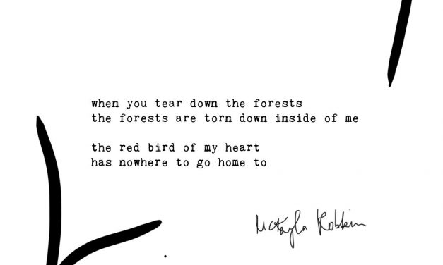 Forests: Typewriter Poems Series